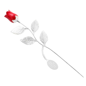 Silver Plated Red Rose buy at Florist